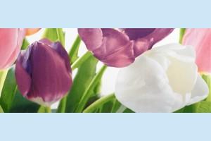 Плитка декоративная Атем Yalta Tulip 2 PN