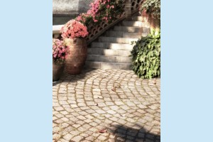 Плитка декоративная Golden Tile - Troyanda Sorrento 60Б361