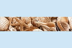 Плитка декоративная Golden Tile - Sea Breeze Shells Е11441