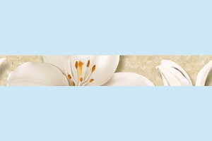 Плитка декоративная Intercerama - Oasis БВ 64 021