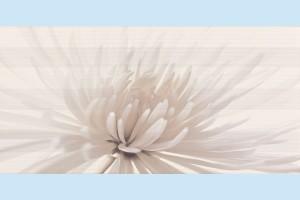 Плитка декоративная Opoczno - Avangarde inserto flower