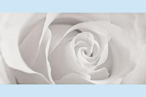 Плитка декоративная Opoczno - Effecta grey inserto
