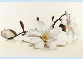 Плитка декоративная Opoczno - Flora inserto magnolia