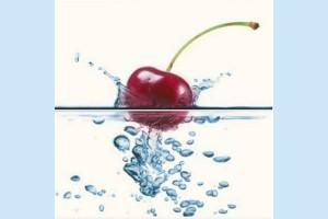 Плитка декоративная Opoczno - Water Sparkles Inserto Cherry
