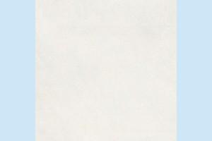 Керамогранит Terragres - Shadow 21I520
